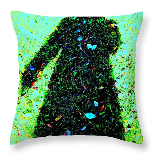 Woman Throw Pillow featuring the photograph Close To Earth by Shirley Sirois