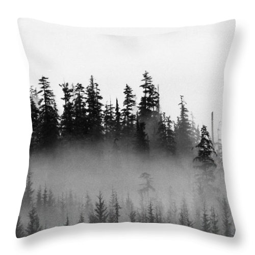Abstract Throw Pillow featuring the photograph Cloud And Trees by Lyle Crump