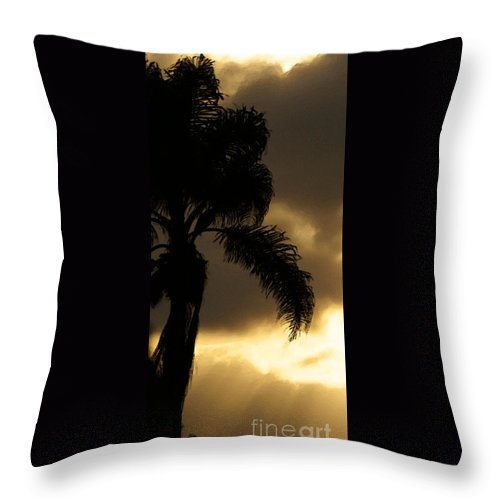 Palm Throw Pillow featuring the photograph Cloud Break by Linda Shafer