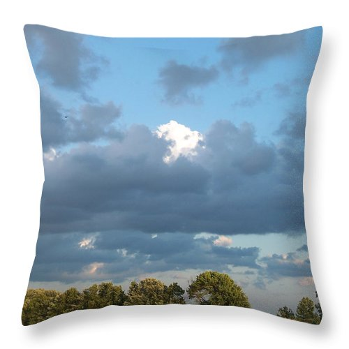 Landscape Throw Pillow featuring the photograph Clouds In A Bright Sky by Michelle Miron-Rebbe