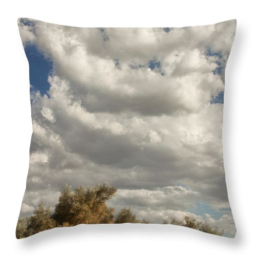 Desert Throw Pillow featuring the photograph Clouds Rising Palm Springs by William Dey