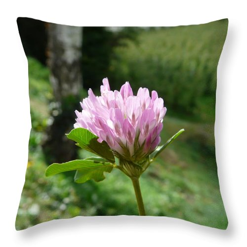 Red Throw Pillow featuring the photograph Clover 1 by Valerie Ornstein