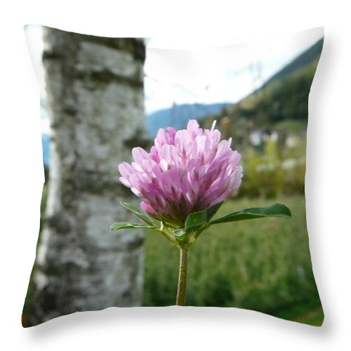 Red Throw Pillow featuring the photograph Clover 2 by Valerie Ornstein