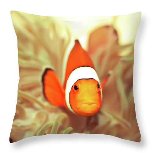 Fish Throw Pillow featuring the photograph Clownfish by MotHaiBaPhoto Prints