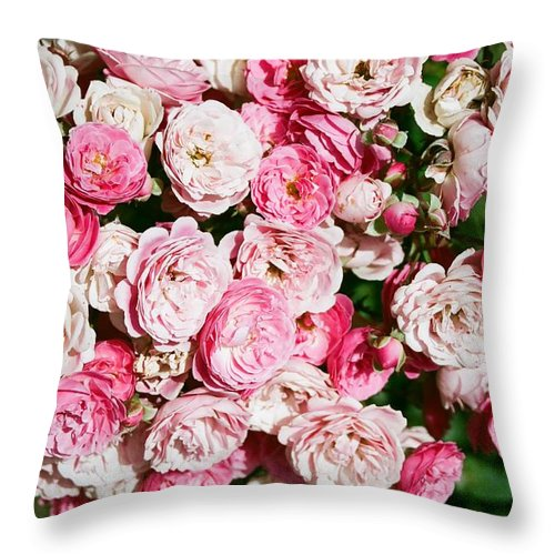 Rose Throw Pillow featuring the photograph Cluster of roses by Dean Triolo