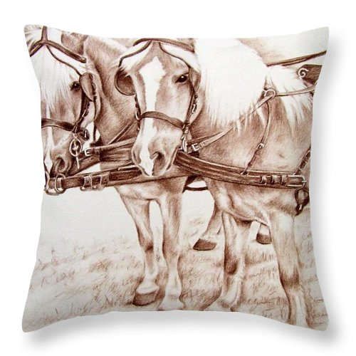 Horses Throw Pillow featuring the drawing Coach Horses by Nicole Zeug