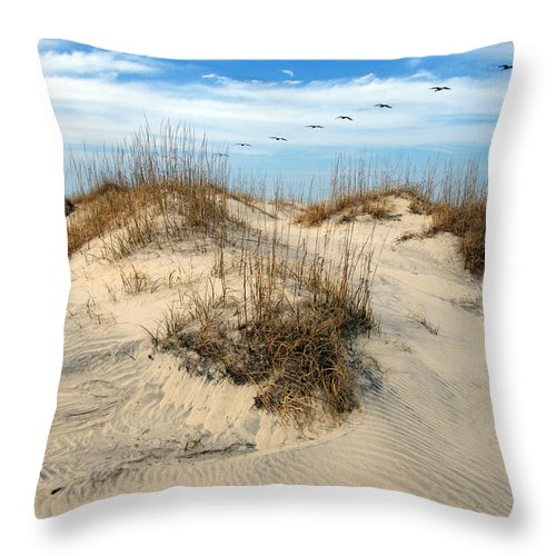 Beach Throw Pillow featuring the photograph Coastal Formation by Kelvin Booker