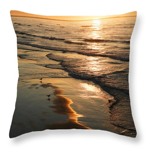 Beach Throw Pillow featuring the photograph Coastal Sunrise by Marilyn Hunt