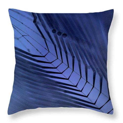 Dewy Throw Pillow featuring the photograph Cobweb by Michal Boubin