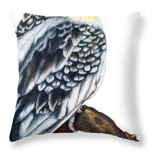Cockatiel Throw Pillow featuring the drawing Cockatiel 2 by Kristen Wesch