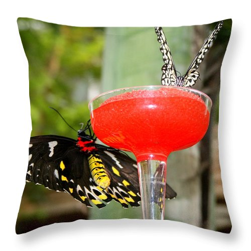 Beverage Throw Pillow featuring the photograph Cocktail Hour by Linda Galok