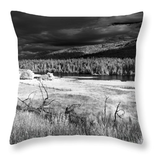 Infrared Landscape Throw Pillow featuring the photograph Cocolala Creek by Lee Santa