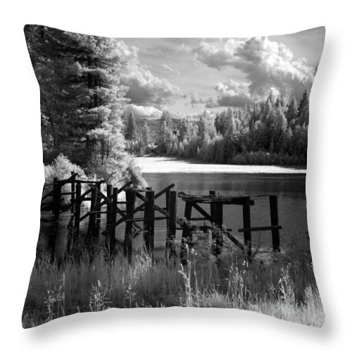 Throw Pillow featuring the photograph Cocolala Creek Slough 2 by Lee Santa