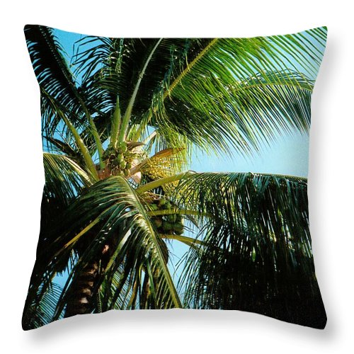 Jamaica Throw Pillow featuring the photograph Coconut Tree by Debbie Levene