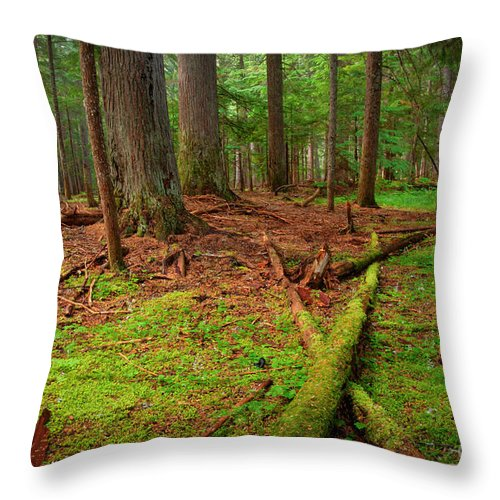 Green Throw Pillow featuring the photograph Coeur D'alene Forest by Idaho Scenic Images Linda Lantzy