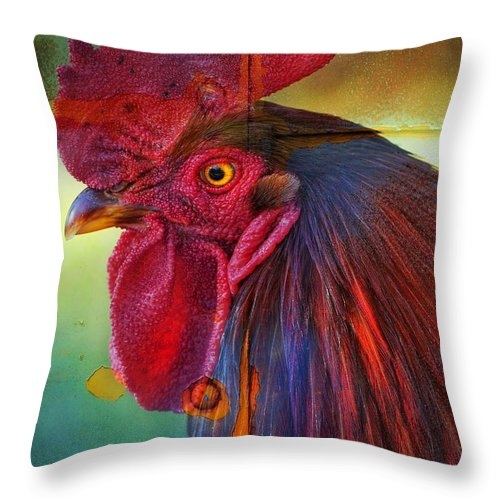 Cogburn Throw Pillow featuring the photograph Cogburn by Skip Hunt