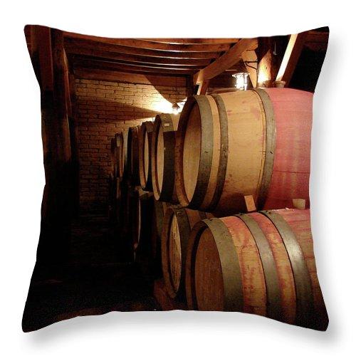 Colchagua Throw Pillow featuring the photograph Colchagua Valley Wine Barrels II by Brett Winn