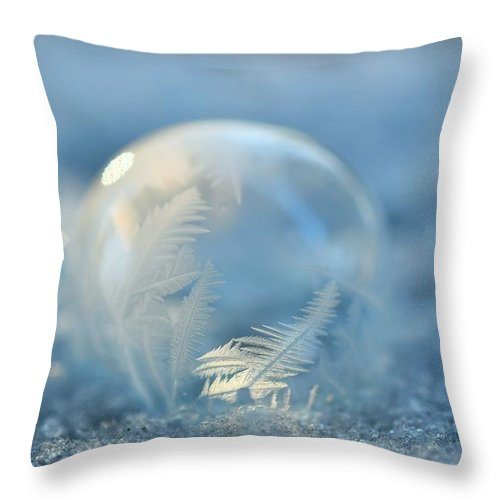 Ice Throw Pillow featuring the photograph Cold As Ice by Julie Street