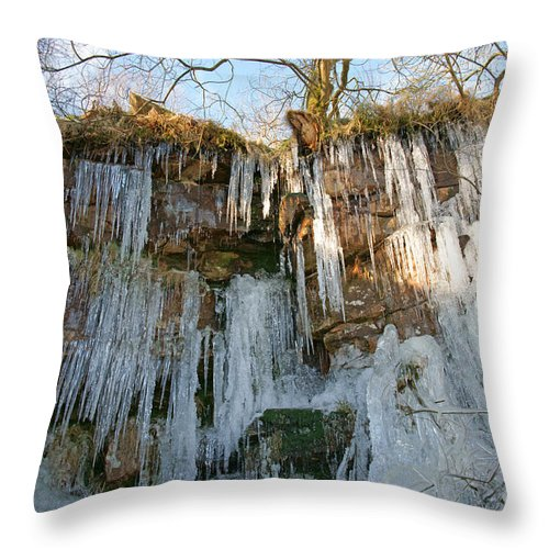 Cold Throw Pillow featuring the photograph Cold Day In The Valley 3 by David Birchall