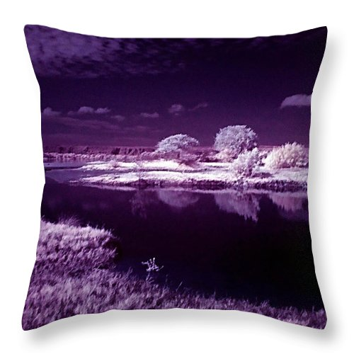Infrared Throw Pillow featuring the photograph Cold Landscape by Galeria Trompiz