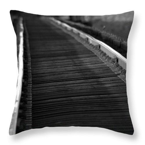 Rail Throw Pillow featuring the photograph Cold Steel by Elizabeth Hart
