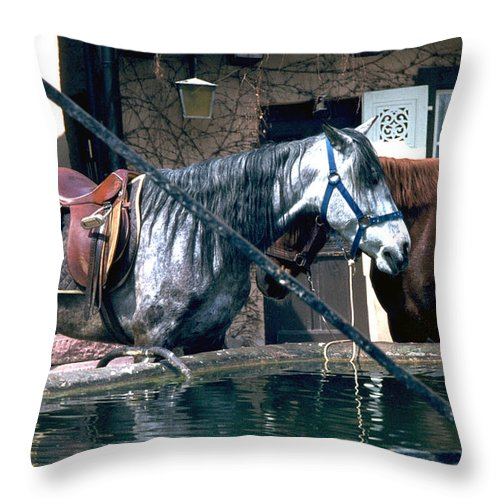 Colmar Throw Pillow featuring the photograph Colmar II by Flavia Westerwelle