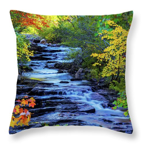 Color Alley Throw Pillow featuring the photograph Color Alley by Chad Dutson