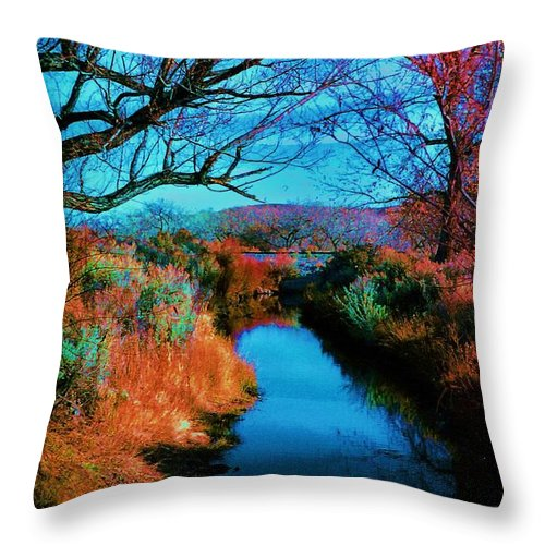 Color Throw Pillow featuring the photograph Color Along The River by Diana Dearen