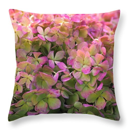 hydrangea throw pillow featuring the photograph color changing little lime hydrangea by rona black - Color Changing Pillow