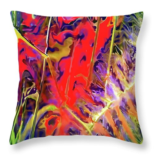 Abstract Throw Pillow featuring the digital art Color Explosion by Ian MacDonald
