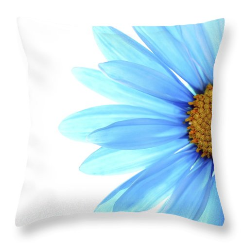 Daisy Throw Pillow featuring the photograph Color Me Blue by Rebecca Cozart