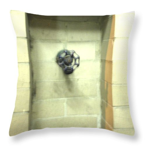 Color Photograph Throw Pillow featuring the photograph Color Spicket by Thomas Valentine