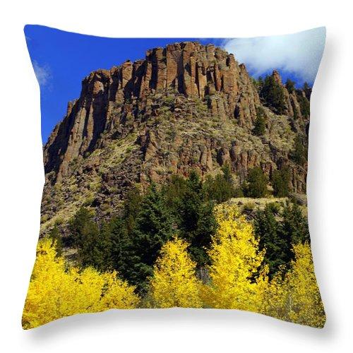 Colorado Throw Pillow featuring the photograph Colorado Butte by Marty Koch