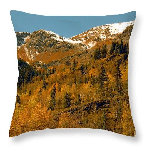 Colorado Throw Pillow featuring the photograph Colorado by David Lee Thompson