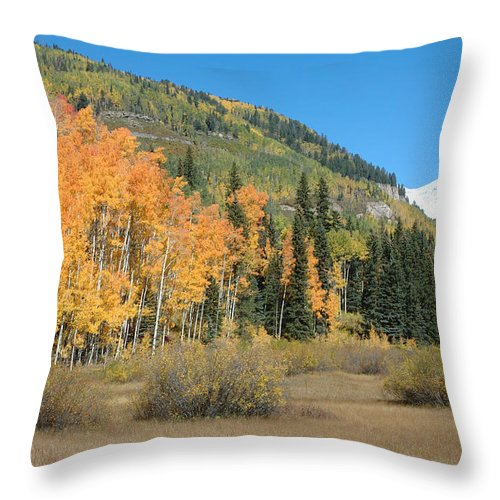 Aspen Throw Pillow featuring the photograph Colorado Gold by Jerry McElroy