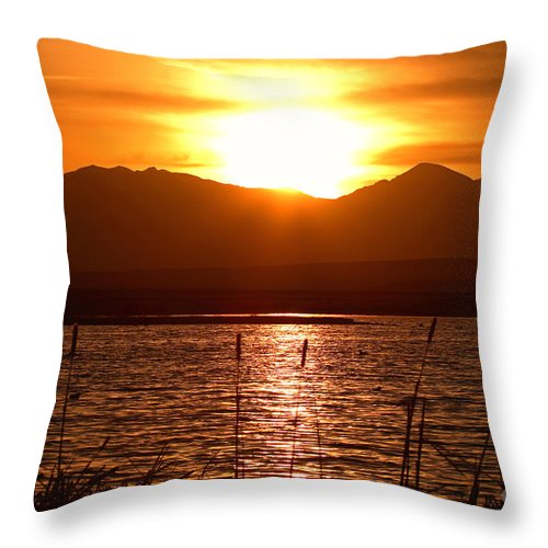 Colorado Throw Pillow featuring the photograph Colorado Marsh At Sunset by Max Allen
