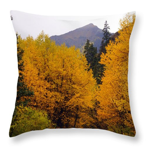 Fall Colors Throw Pillow featuring the photograph Colorado Road by Marty Koch