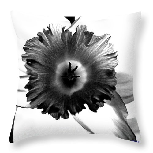 Bw black & White Modern Edge Daffodil Nature Bloom Flower Photograph Throw Pillow featuring the photograph ColorBlind. by Stevie Ellis