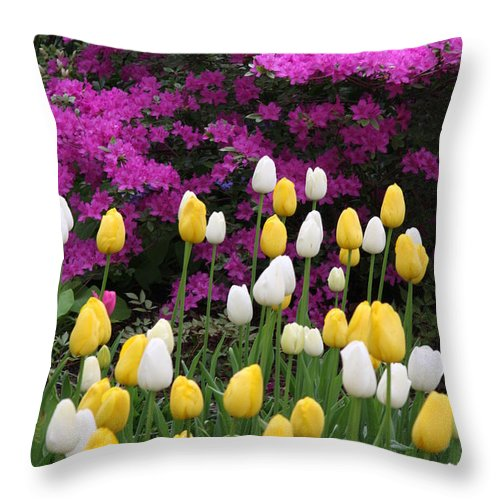 Azalea Throw Pillow featuring the photograph Colorful Spring by Christiane Schulze Art And Photography