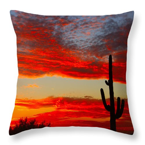Sunsets Throw Pillow featuring the photograph Colorful Arizona Sunset by James BO Insogna