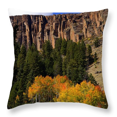 Fall Colors Throw Pillow featuring the photograph Colorful Canyon by Marty Koch