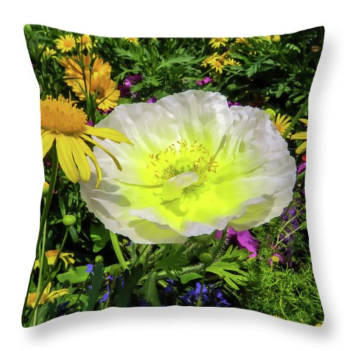 Poppy Throw Pillow featuring the photograph Colorful Garden by Zina Stromberg