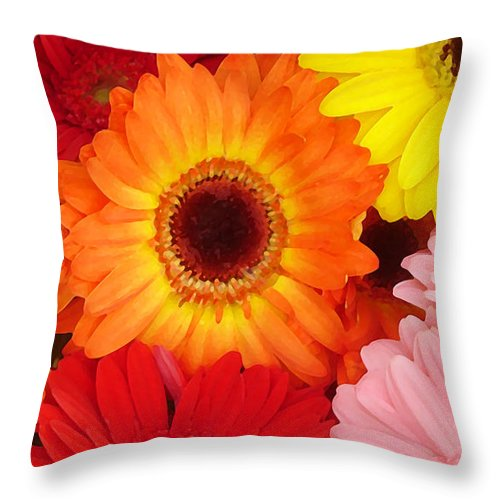 Gerber Daisy Throw Pillow featuring the painting Colorful Gerber Daisies by Amy Vangsgard