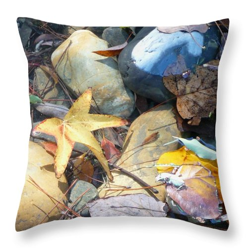 Leaves Throw Pillow featuring the photograph Colorful Leaves And Rocks In Creek by Carol Groenen