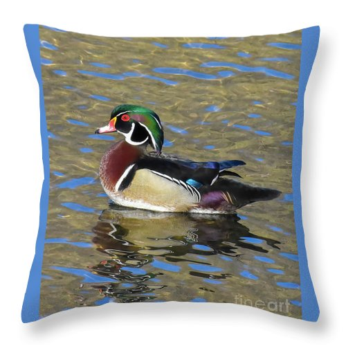Wood Duck Throw Pillow featuring the photograph Colorful Wood Duck by Cynthia Staley