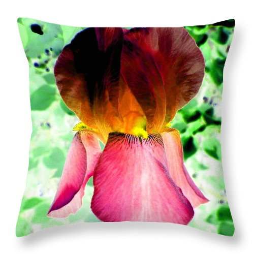 Photo Design Throw Pillow featuring the digital art Colormax 3 by Will Borden