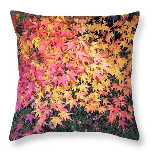 Fall Leaves Throw Pillow featuring the photograph Colors Of Fall by Karin Dawn Kelshall- Best