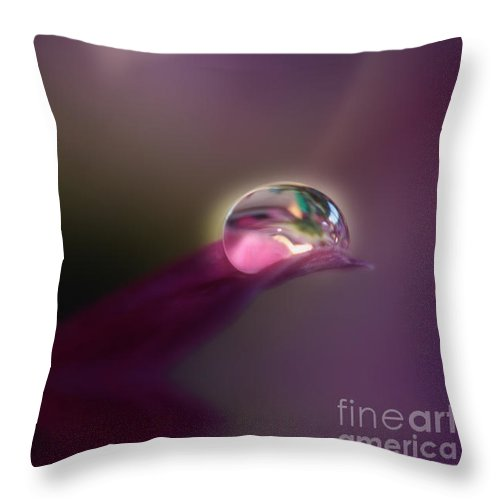 Calm Throw Pillow featuring the photograph Colour And Light by Kym Clarke