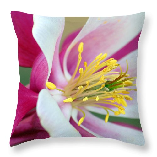 Columbine Throw Pillow featuring the photograph Columbine Flower 2 by Amy Fose