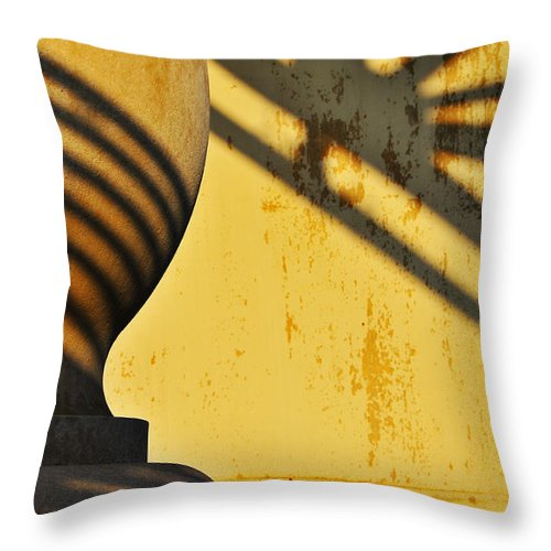 Architecture Throw Pillow featuring the photograph Comb Over by Skip Hunt